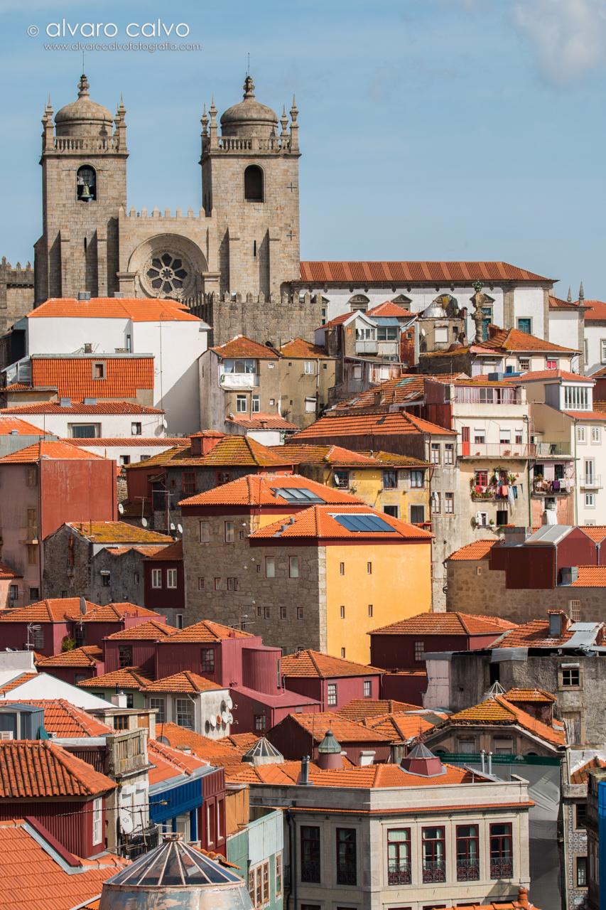 Oporto - Casas de Oporto y sus tejados, al fondo la catedral de Oporto