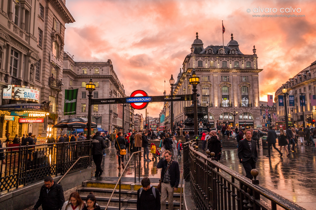 Picadilly Circus al atardecer - Londres
