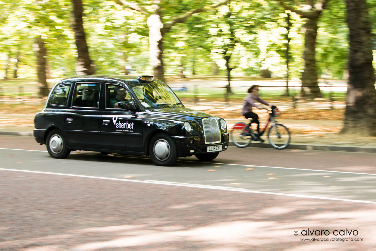 London taxi corporation ltd - London taxi en los jardines de Buckingham