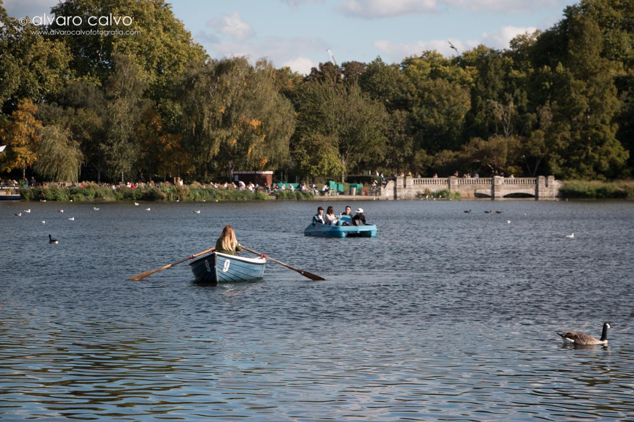 Lago Serpentine - Hyde Park - Londres / London