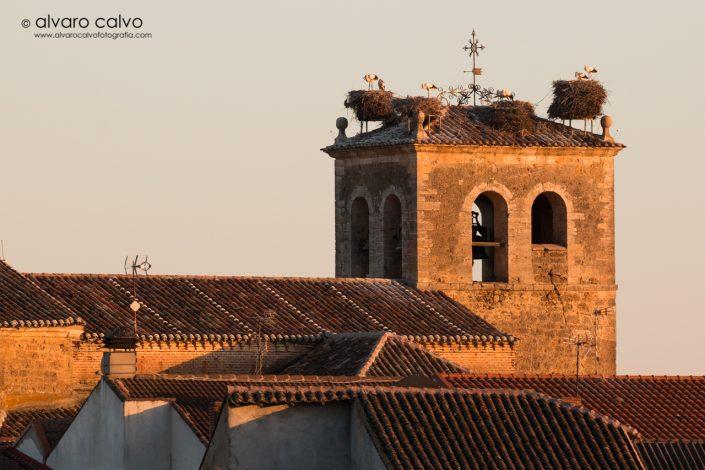 Iglesia castellana