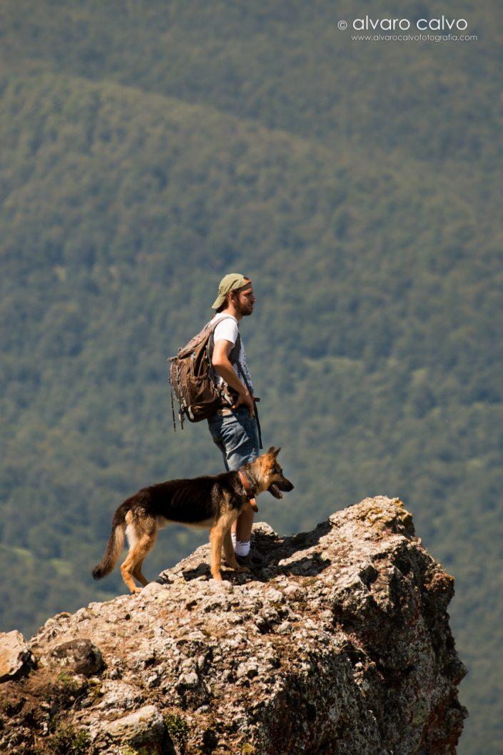 El mejor amigo del hombre en los Picos de Europa