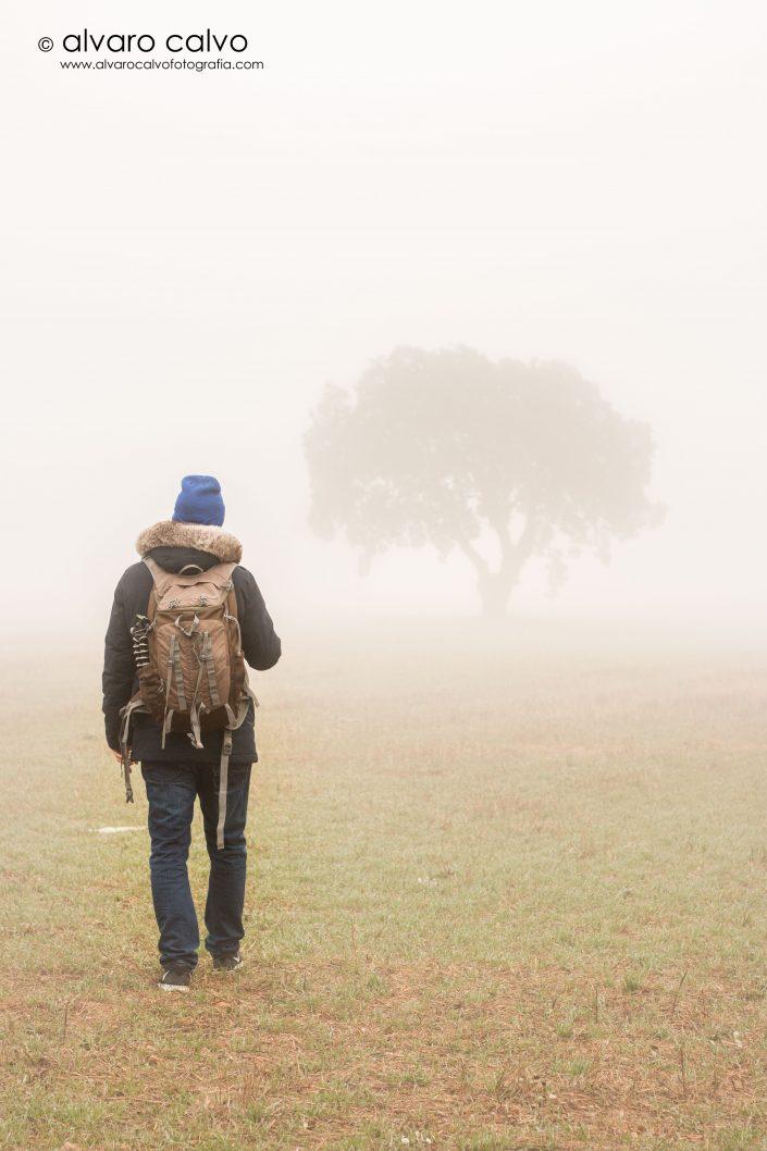 Retrato entre la niebla